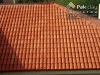 10-red-bricks-clay-roofing-tiles-images-pictures-photos-9