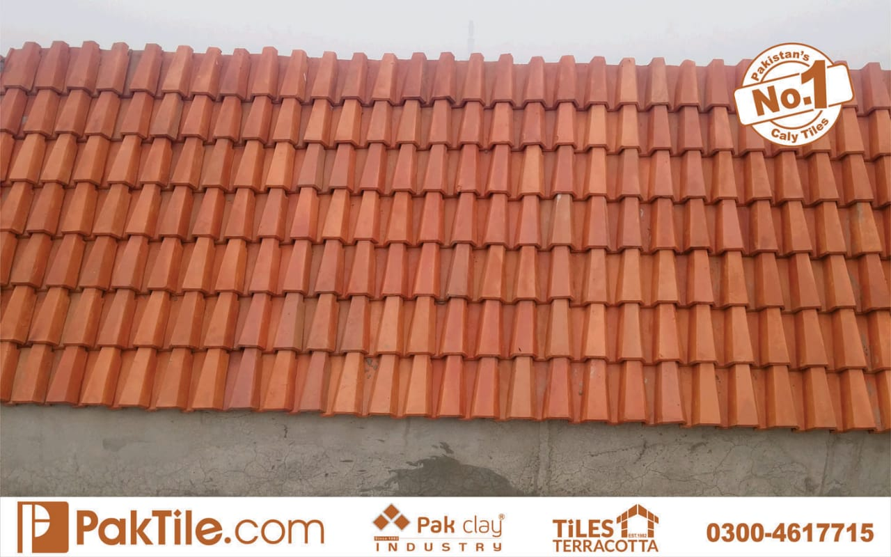 clay roof tiles design
