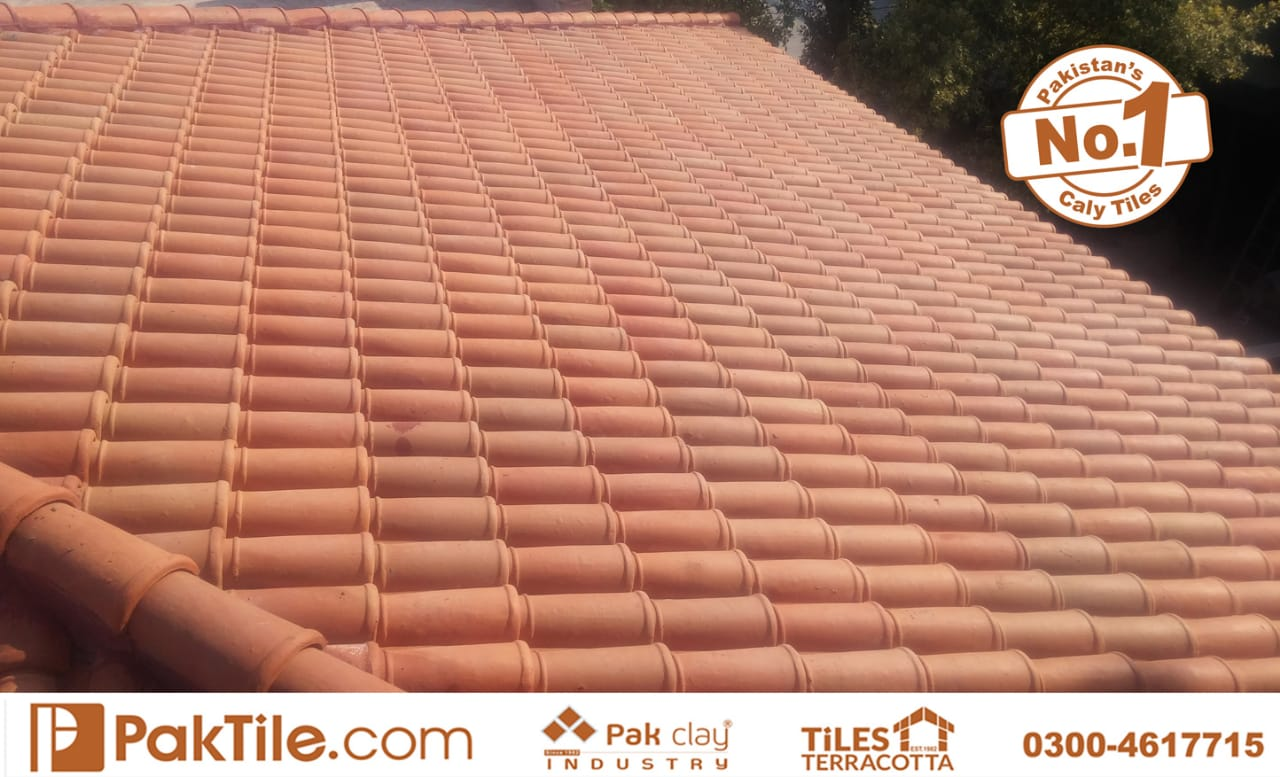 natural clay roof tiles industry