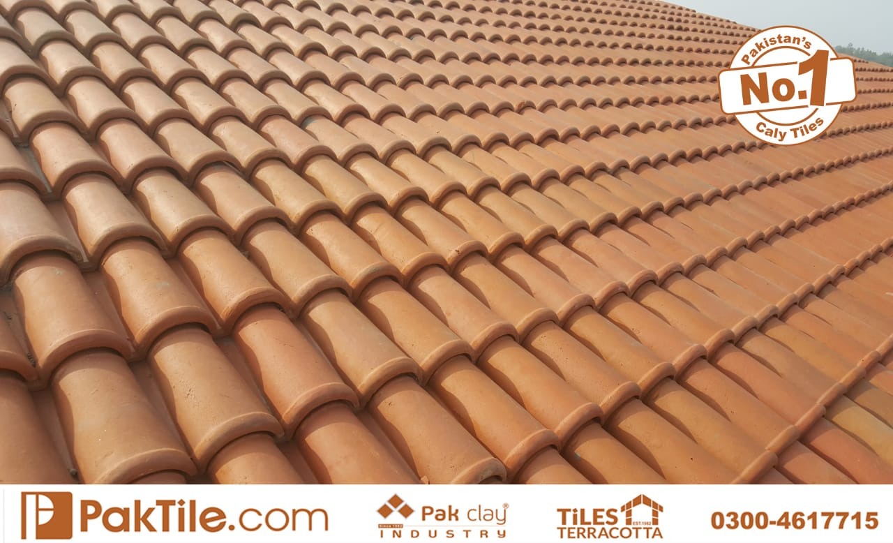 roof tiles types (2)