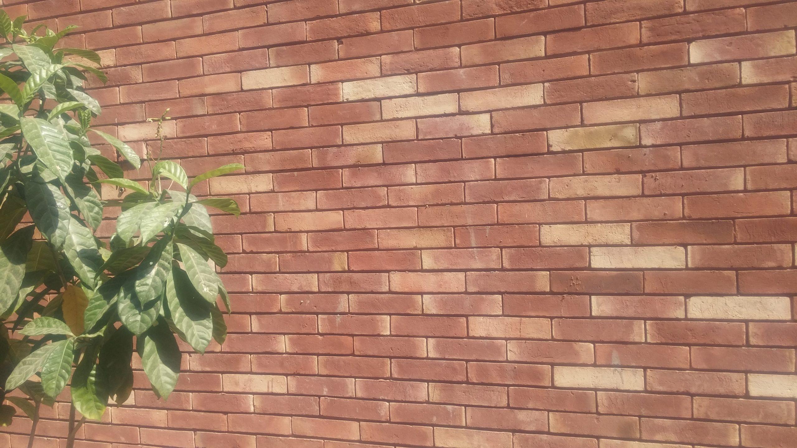 Gutka Tile Rate in Rawalpindi Pak Clay Tiles Lahore Brick Tiles Price in Pakistan Images (6)