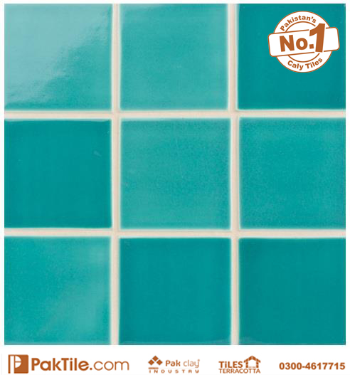 Pak Clay Swimming Pool Tiles Texture for sale in Pakistan Available Size 2x2 inch 3x3 4x4 6x6 inch