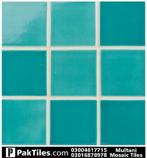 ceramic tiles for swimming pools