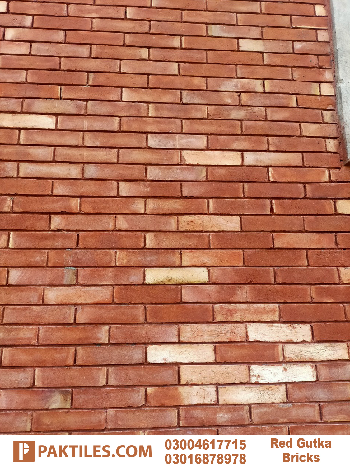 Red Bricks Wall Gutka Tile Rate in Lahore